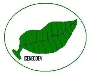 ICENECDEV