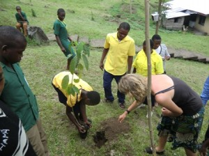 Volunteer in Cameroon