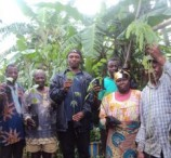 Green Cameroon Plants 500 Trees around Mount Cameroon