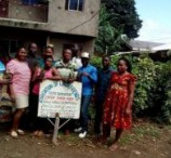 Green Cameroon Plants Trees in Limbe Communities