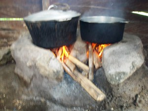 Green Cameroon Stoves