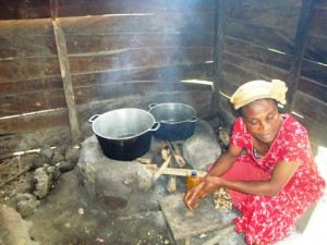 Community Development.Green Cameroon 4