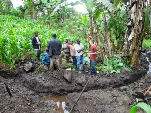 Community Development.Green Cameroon